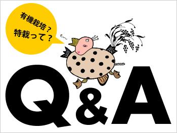 パーマリンク先: 太ももの会によくある質問